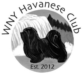 WNY Havanese Club Logo